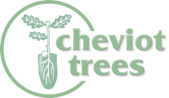 cheviot trees logo